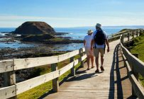 phillip-island-tours8
